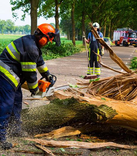 Bliksem velt boom in Mijlstraat Boxtel; weg is weer vrij