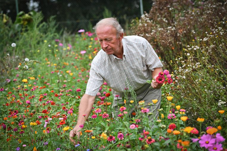 'Plantenfluisteraar' Raf Willaert kan uren doorbrengen in zijn tuin.