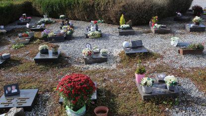 Gemeente vraagt om bloempotten van graven te halen
