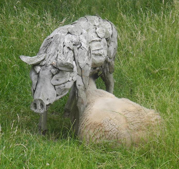 Mensen zijn niet de enigen met dorst op warme dagen. Dit schaap hoopt melk te halen uit een houten varken.