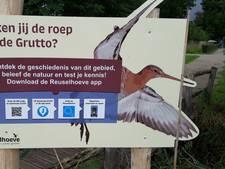 VIDEO: Hilver blijkt walhalla voor weidevogels, belevingsapp gelanceerd