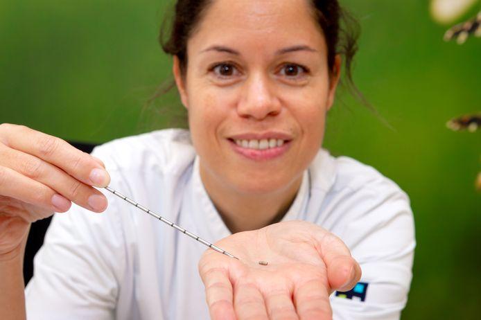 Chirurg Patricia Jansen toont het magneetje waarmee de tumor in een borst wordt 'gemarkeerd'.