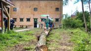 Natuurhuis De Paardenstal heropent op 5 juli