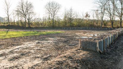 Water- en modderproblemen behoren tot het verleden in Paasbosstraat en Heikenstraat