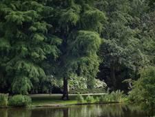 Lof voor Verdubbelingsplan Oosterpark