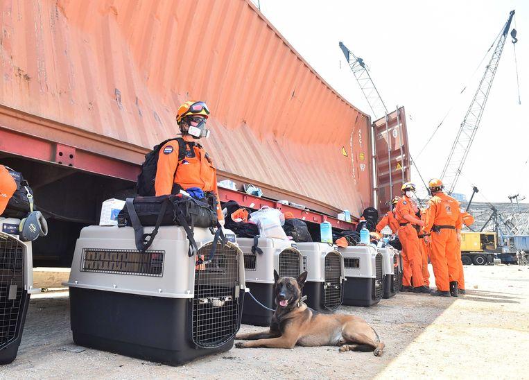 Leden van de reddingsploeg Urban Search and Rescue (USAR) in de haven van Beiroet. Het team zoekt naar overlevenden, drie dagen na een verwoestende explosie in de Libanese hoofdstad. Beeld ANP