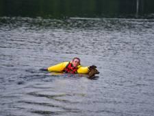 Brandweer redt hert uit kanaal in Tilburg, maar dier springt opnieuw water in