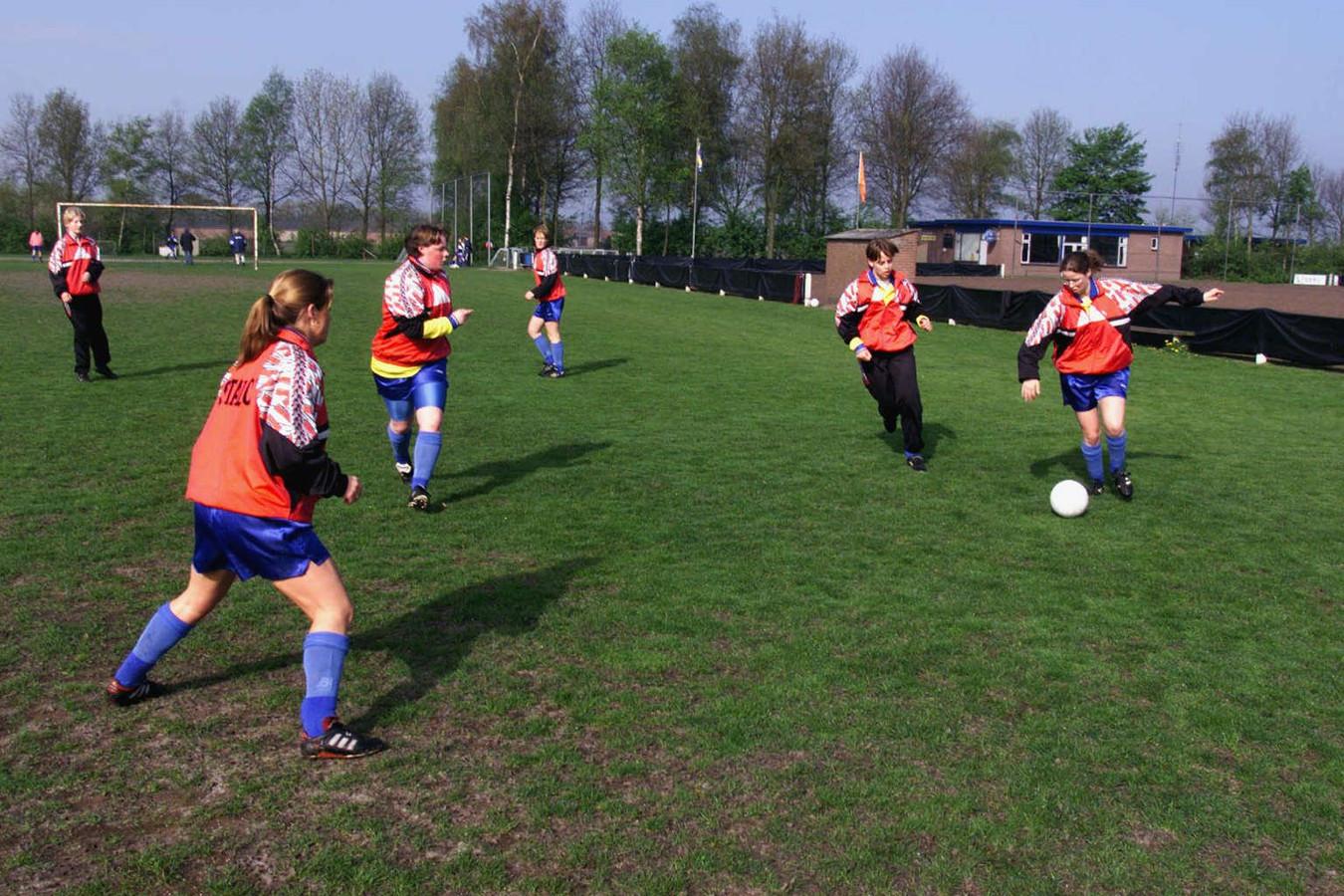 Het sportpark in Hulsel op een archieffoto. Hier wel met groen gras...