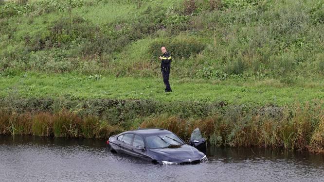 Wesp laat bestuurder zó hard schrikken dat hij met zijn auto in het water belandt