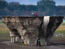 Expert gaat 'onveilig' landschapskunstwerk bij Biddinghuizen onderzoeken