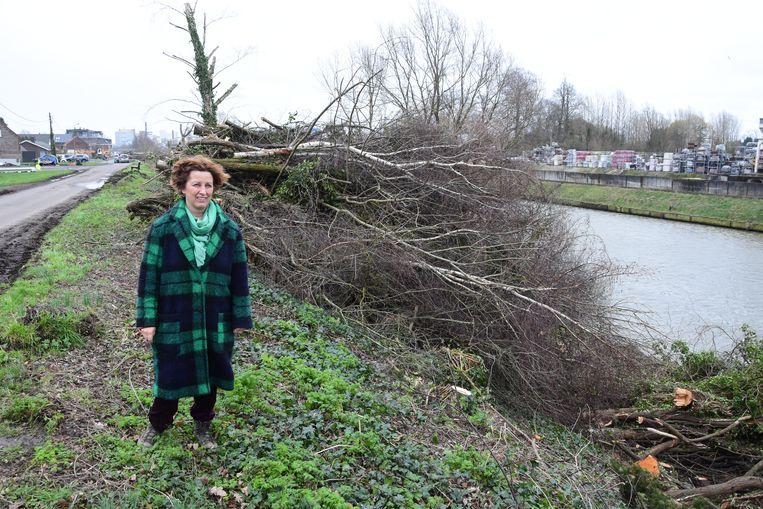 Mieke Schauvliege aan de gekapte bomen langs het kanaal Gent-Brugge.