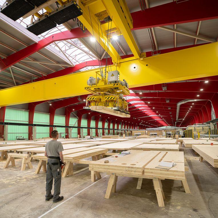 Bij de firma Derix worden houten planken verlijmd tot kruislaaghout (CLT), dat gebruikt wordt in de huizenbouw. Beeld Harry Cock / de Volkskrant