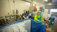 Levenstond Seafood bouwt nieuwe visfabriek op 't Reeck en creëert 30 extra jobs