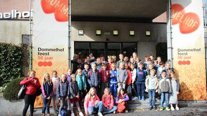 Vijfde klassen van vrije basisschool op musicalklassen in Neerpelt