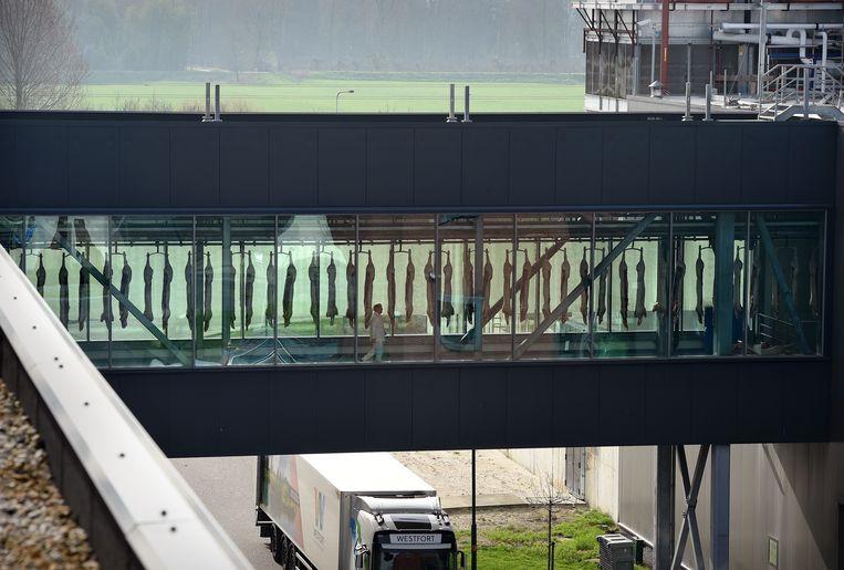 De slachterij van de duurzame varkensvleesproducent Westfort Vleesproducten in IJsselstein. Beeld Marcel van den Bergh