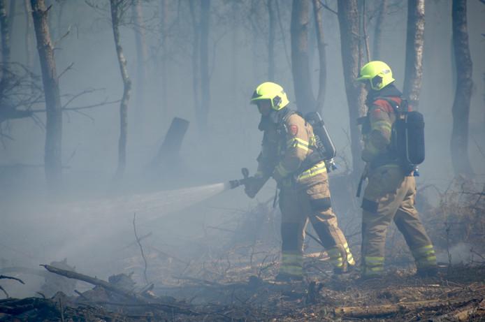 Brandweerlieden proberen de natuurbrand bij Arnhem te bedwingen.