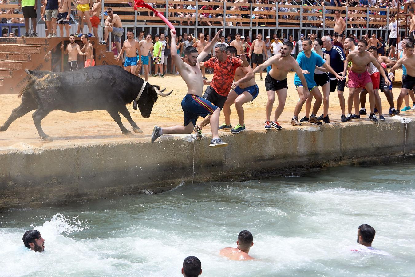 """La """" Bous a la Mar"""" (NDLR= """"Taureaux à la mer"""") est un événement annuel organisé dans la ville de Dénia en Andalousie."""
