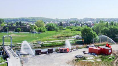 Bietensmurrie doodt 99,8% van de vissen in Schelde in Wallonië: kan Vlaanderen dat voorkomen?