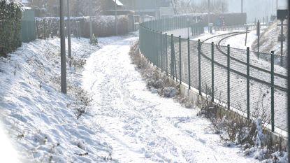"""""""Stad vergeet fiets- en voetpaden sneeuwvrij te maken"""", klaagt Fietsersbond aan"""
