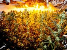 Burgemeesters van Helmond en Valkenswaard willen geld van drugscriminelen afpakken: 'Maar dan moet je wel investeren'