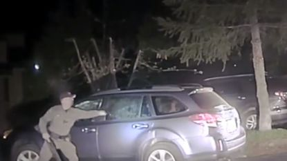 VIDEO. Heldhaftige agent bevrijdt beer uit auto