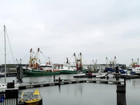 EU: compensatie voor vissers die lijden onder harde brexit