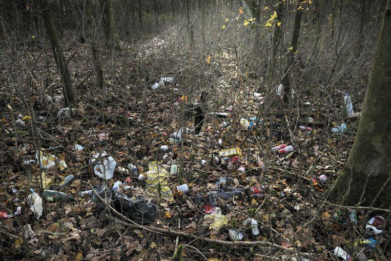 Zwerfafval in een bos. Beeld Joost van den Broek / de Volkskrant