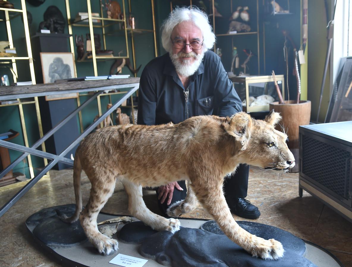 Wim Pfaff bij de presentatie van het opgezette leeuwtje Simba in Middelburg.