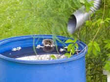 Hoe simpel kun je op waterverbruik besparen en grondwater aanvullen, denk ik met schaamte