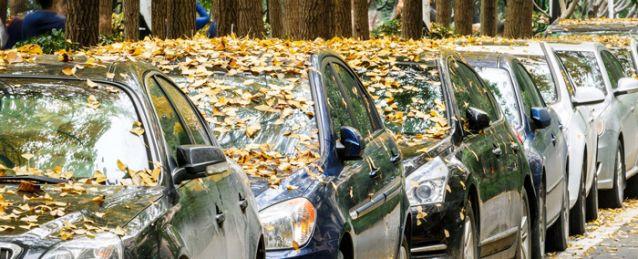 Vaak raken afvoerkanalen verstopt door herfstbladeren.
