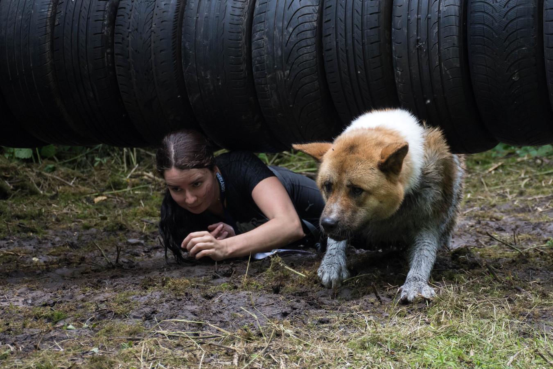 Een beeld uit een eerdere editie van Dogsurvival Zeewolde, dat jaarlijks meer deelnemers kent. Zaterdag kunnen geïnteresseerden zich inschrijven voor editie 2019.