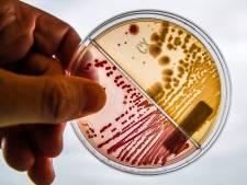 Amphia-microbioloog Kluytmans: 'Nederlandse aanpak tegen resistente bacteriën werkt goed'