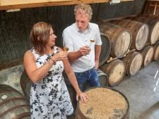 Ondernemers willen whisky gaan stoken in de Maashorst