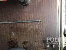 Dierenpolitie Oldenzaal vindt geen andere strikken in omgeving waar dode kat in strop zat