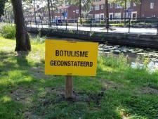 Botulisme ontdekt in Alblasserdamse sloot na vondst dode vissen en zwanen