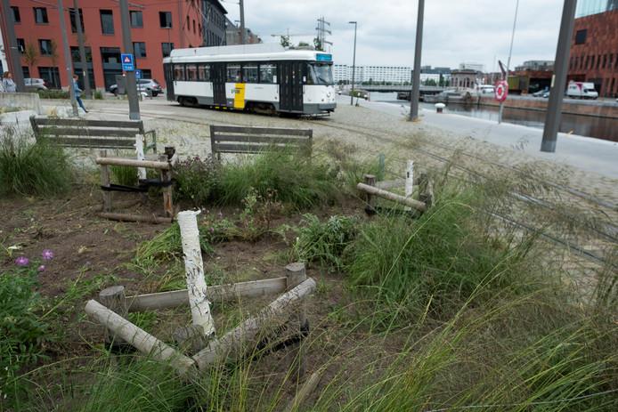 De pas geplante bomen op het eilandje zijn al voor deel afgezaagd