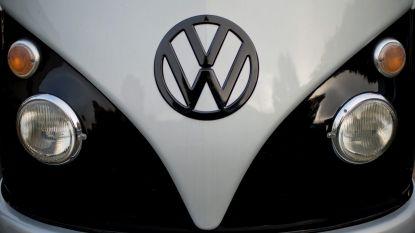 Iconische Volkswagens palmen weer Westendse dijk in