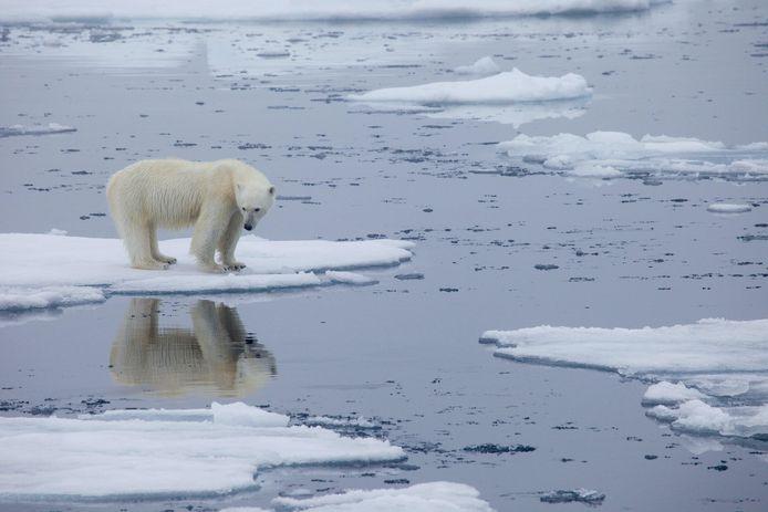 Beeld ter illustratie. Klimaatwetenschappers waarschuwen al decennia dat hogere temperaturen leiden tot meer droogte, extreem weer, smeltend poolijs en een stijgende zeespiegel.