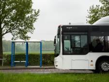 Hoek van Holland krijgt oproepbare buurtbus:  Buurtbus 435 vervangt lijnbus 35