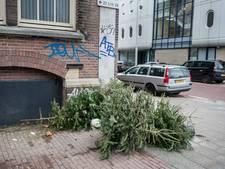 Veel Arnhemse kerstbomen niet opgehaald