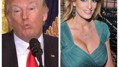 Advocaat van Trump geeft toe dat hij pornoster zwijggeld betaalde