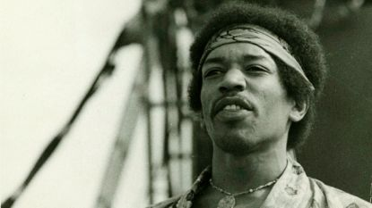 Complottheorie ontkracht: Jimi Hendrix is niét verantwoordelijk voor wilde parkieten in Groot-Brittannië
