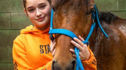 Meisje herenigd met pony die 4 maanden ronddoolde in reservaat