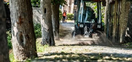 Veel meer geld nodig voor groenonderhoud in de gemeente Moerdijk