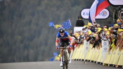 LIVE TOUR. Cavagna op eenzame hoogte, zet Roglic de puntjes op de i? En wat kan Van Aert?