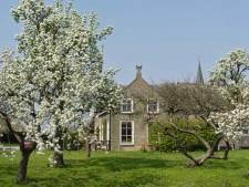 Bijen en vogels varen wel door komst fruitbomen in Midden-Delfland
