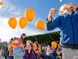 Koningsdagsabotage: over de anti-ballonnenlobby en vergunningsleed