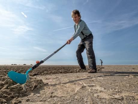 Geen aliens maar Nico maakte de 'verdachte graancirkels' in het zand van de Zandmotor