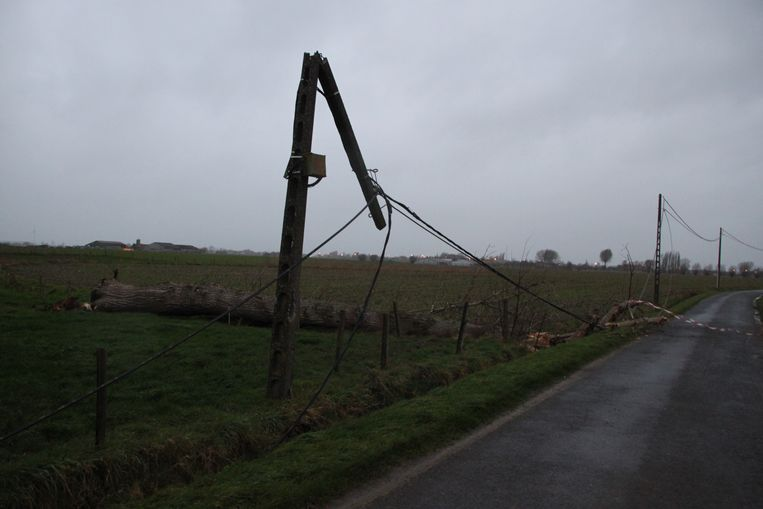 In de Peperstraat in Langemark-Poelkapelle knapte een elektriciteitspaal middendoor doordat een grote boom op de elektriciteitskabels terecht kwam.
