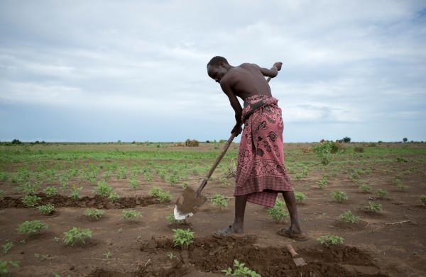 Een film die toont hoe het Ethiopische platteland wordt **overgenomen** door buitenlandse bedrijven